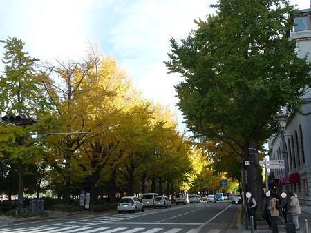 121115-紅葉 山下公園通り (27)