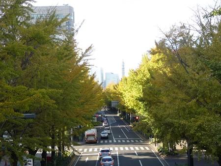 121115-紅葉 山下公園通り (62)