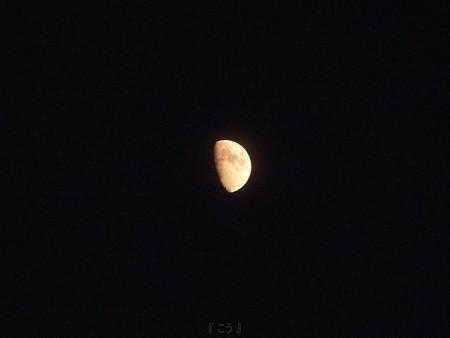 121122-お月さん (5)