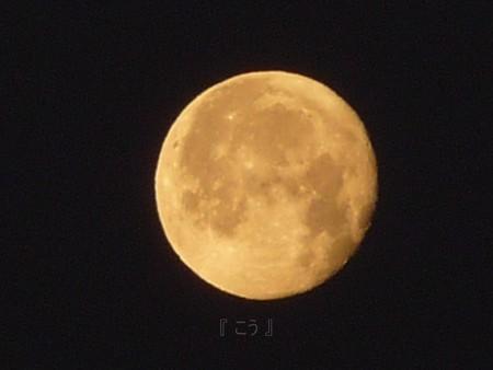 130129-富士山とお月さん (9)