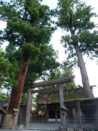 130607-お伊勢さん 外宮 (16)