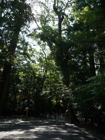 130607-お伊勢さん 内宮 (29)