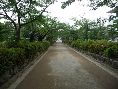 130619-段葛 (12)