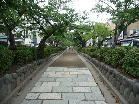 130619-段葛 (2)