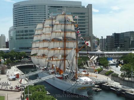 130715-帆船日本丸 総帆展帆 (39)