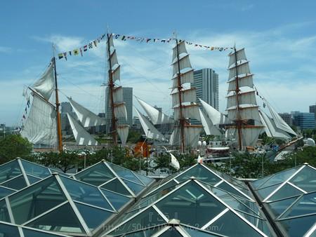 130715-帆船日本丸 総帆展帆 (60)