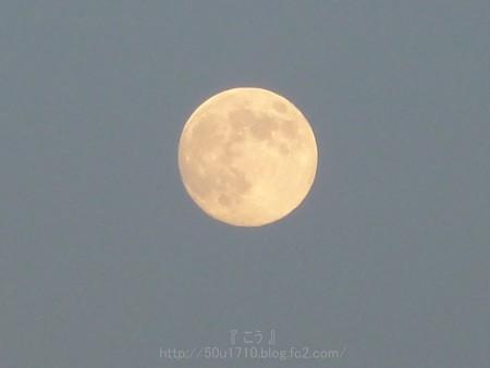 130820-お月さん (3)