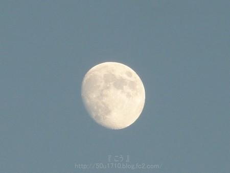 131016-お月さん (4)