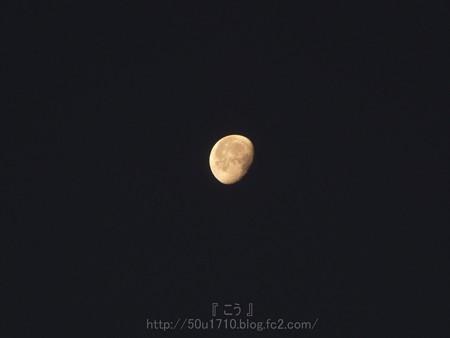 131222-お月さん(朝) (1)