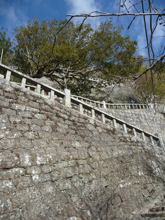 140105-久能山 (23)