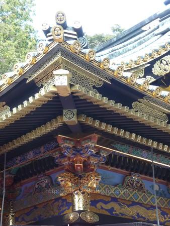 140105-久能山東照宮 (45)
