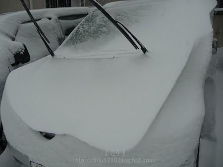 140208-雪 (14)