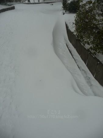 140208-雪 (32)