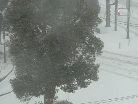 140208-雪 (40)