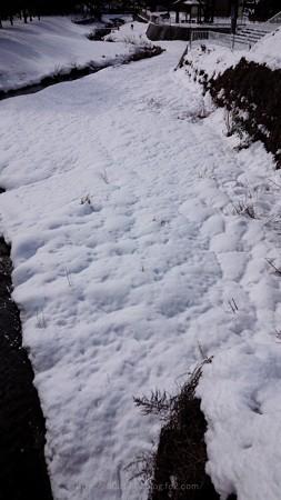 140209-雪 (12)