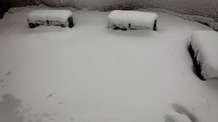 140214-雪 (4)