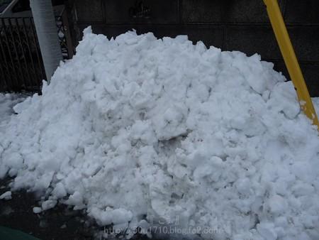 140215-雪 (11)