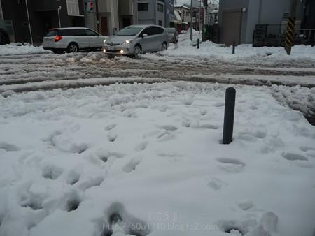140215-雪 (26)