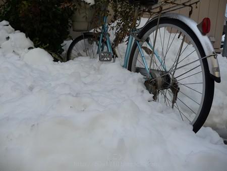 140215-雪 (32)