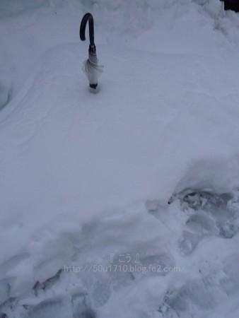 140215-雪 (46)
