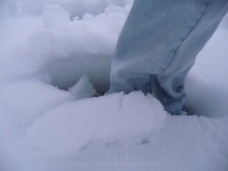 140215-雪 (49)