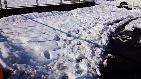 140216-雪 (3)