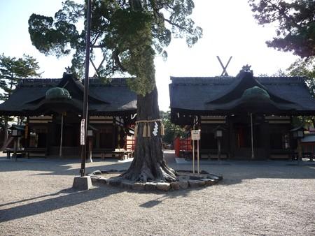 140308-住吉大社 (19)