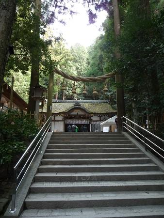 140308-大神神社 (9)