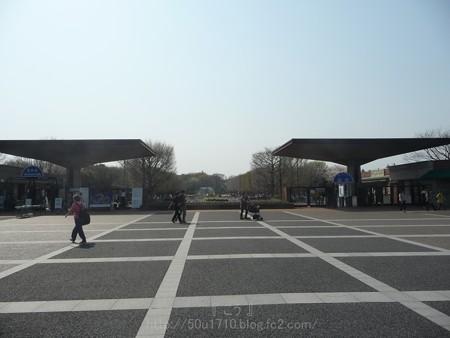 140408-昭和記念公園 (3)