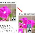 Photos: 15puzzle_pic