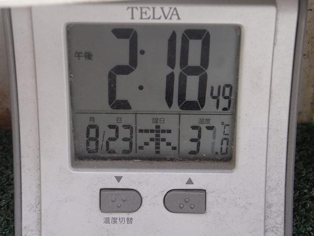 気温37℃