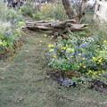 ターシャチューダ素足の庭