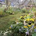 ターシャチューダの素足の庭2