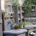 国バラガーデニング 屋外水洗
