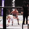Photos: UFC JAPAN 2013 さいたまスーパーアリーナ 20130303  (24)