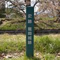 史跡 龍岡城跡DSC_1003(信州五稜郭)