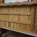 Photos: 02 博多祇園山笠 飾り山 博多駅 2013年 サザエさん写真08他