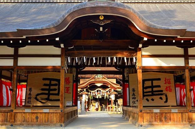 藤森神社 干支の巨大絵馬が