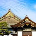 Photos: 二の丸御殿(国宝)