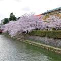 Photos: 京都市美術館横