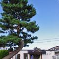 Photos: JR東日本・陸羽東線、岩出山駅