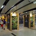 阪神・本線、神戸三宮駅