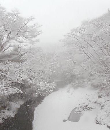 名栗川800