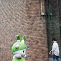 Photos: 20140705_047_ふっかちゃん002