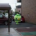 Photos: 20140705_048_カッパのコタロウ001