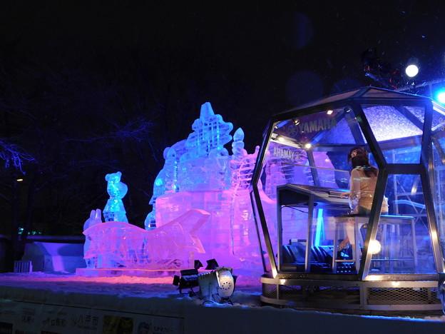 札幌市大通~さっぽろ雪まつり65