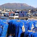 原別漁港とホタテ漁網籠01-12.10.26