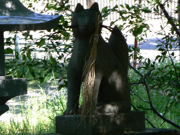 山本稲荷神社P1010673