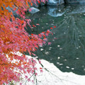 Photos: LR-20131208_170101
