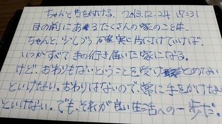 IMG_20131224_173011.jpg